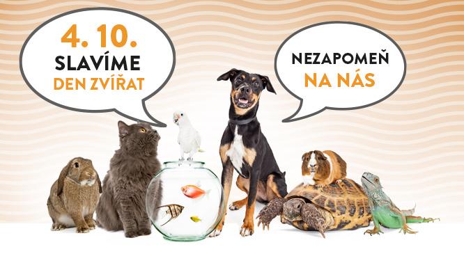 Mezinárodní den zvířat | Labet.cz